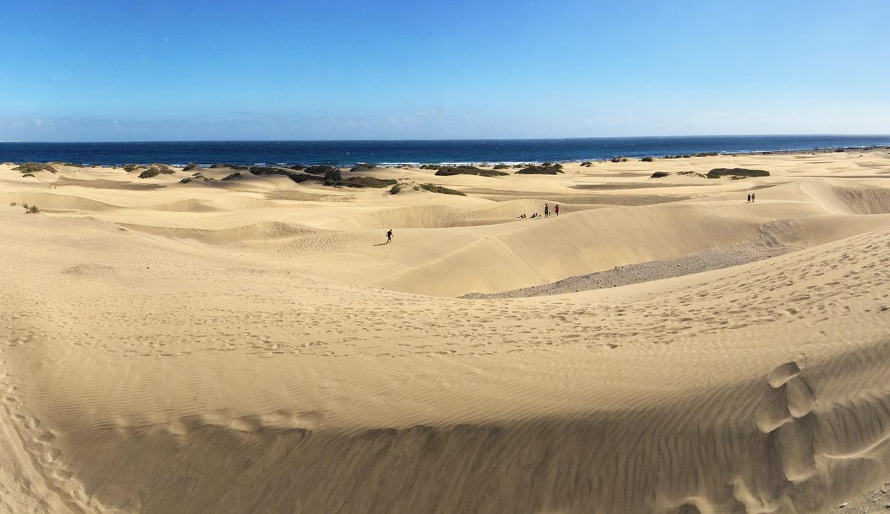 Die Dünen von Mas Palomas