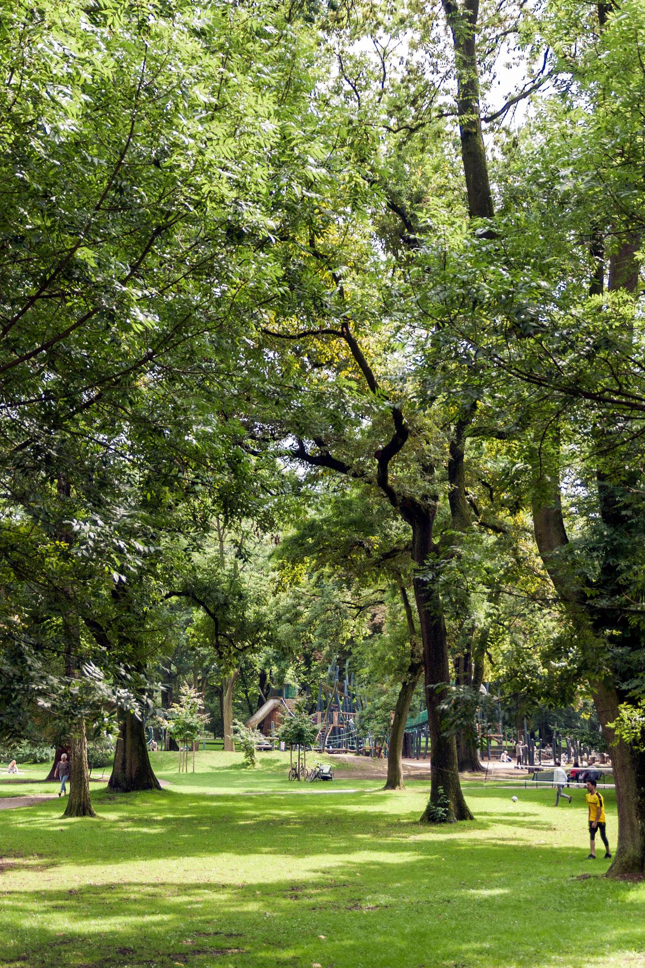 Der schöne Westpark mitten in der Dortmunder City.