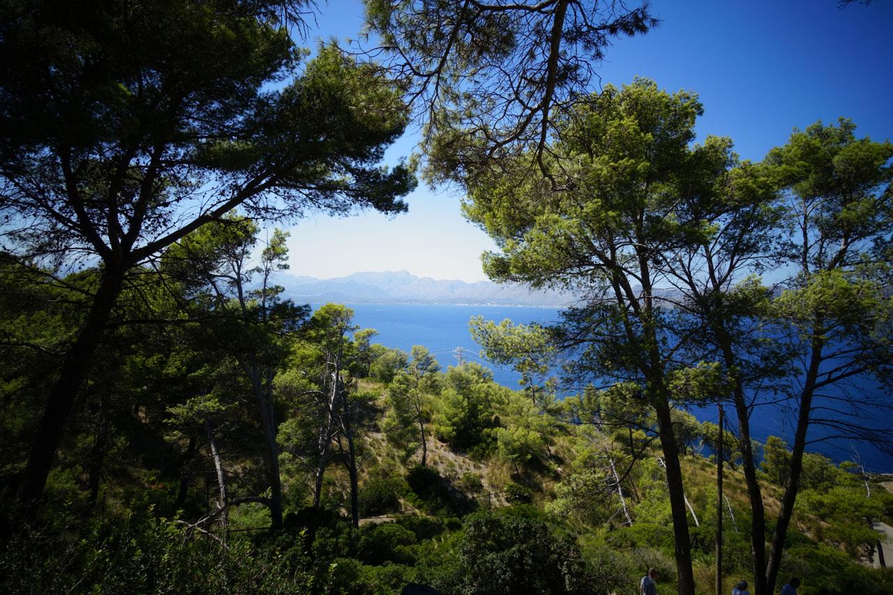Grünes Mallorca: Ermita La Victoria