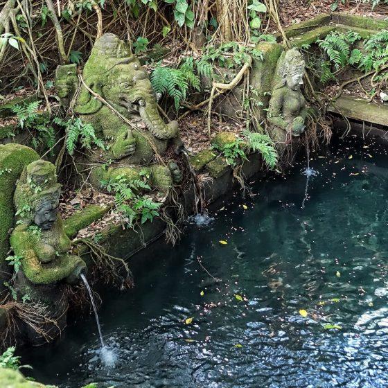Tempel im Monkey Forest