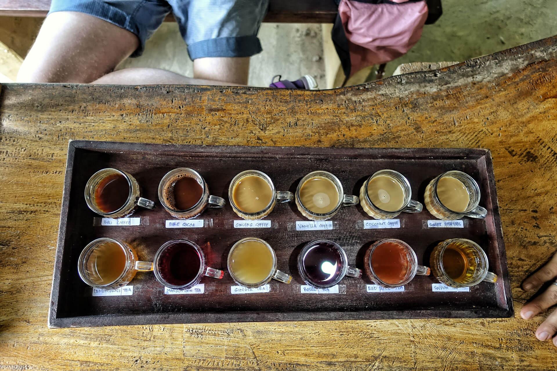 Tee und Kaffe Tasting in Tenganan