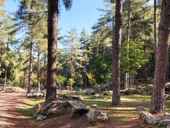 Camping Tuani bei Corte