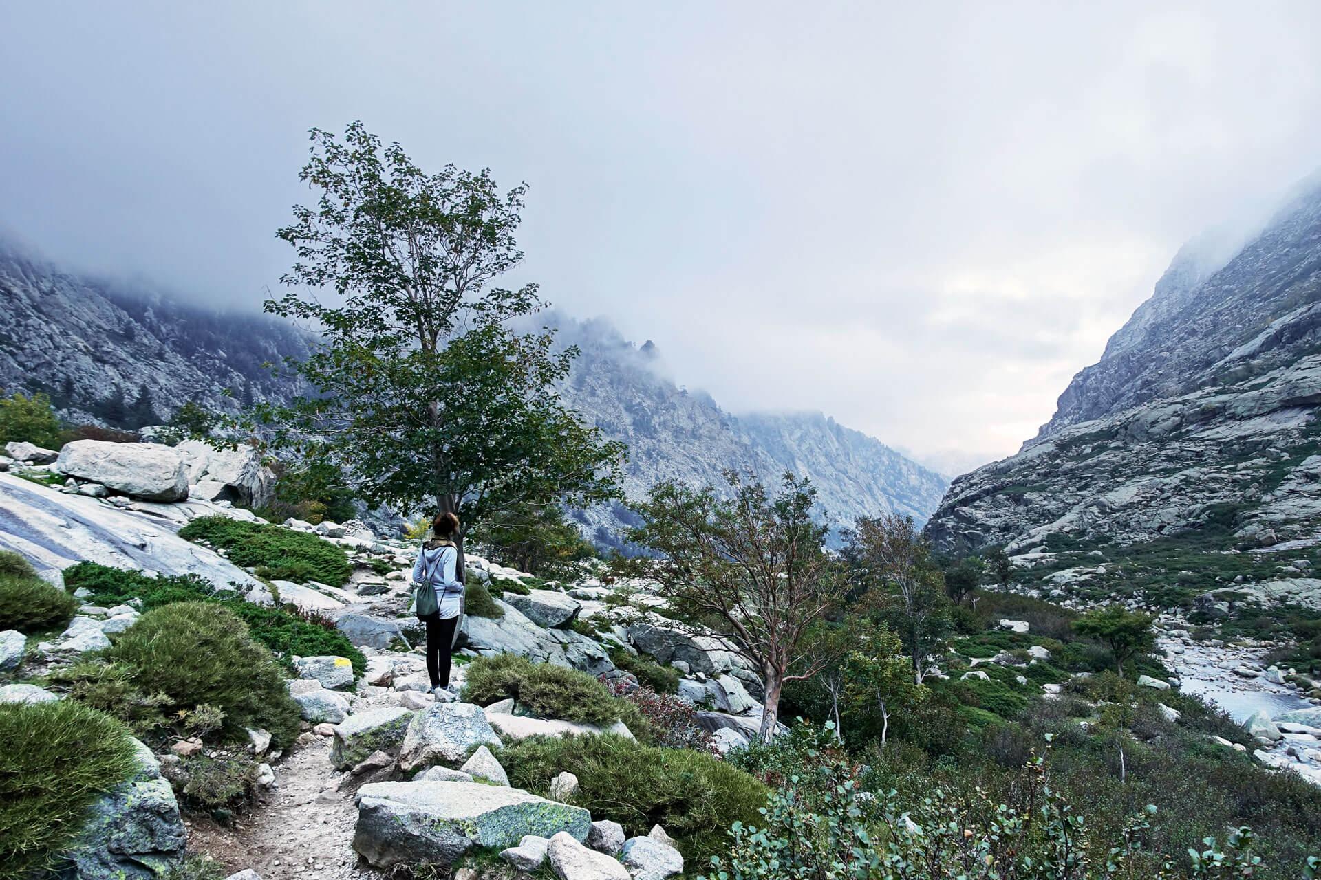 Restonica Tal auf Korsika